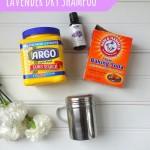DIY Dry Shampoo & Favorite Vegan Beauty Products