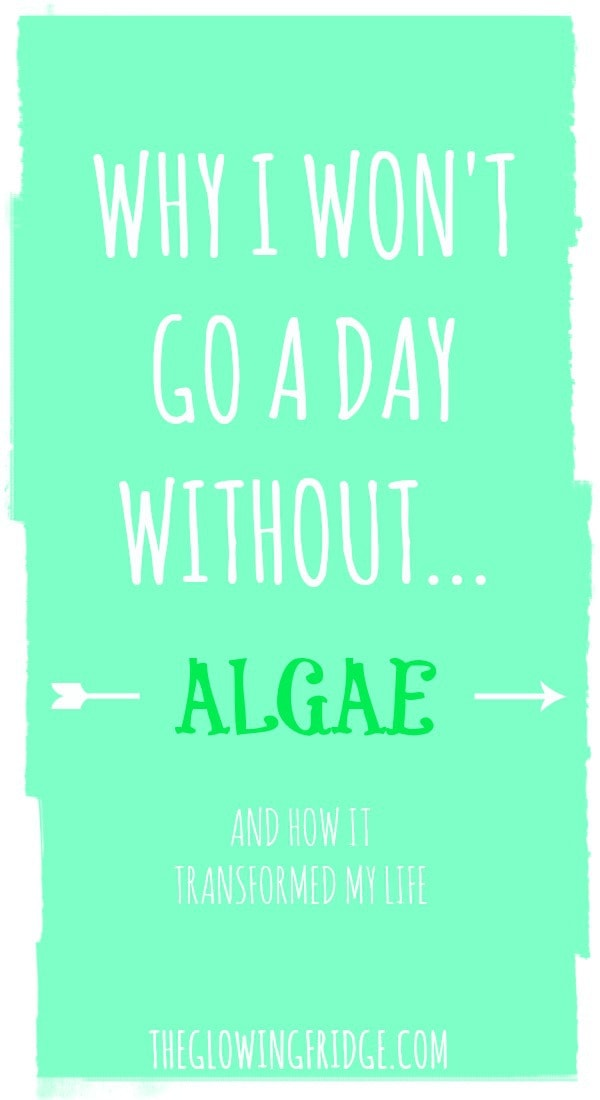 || My Love Affair with Algae || and how I won't go a day without it now! From The Glowing Fridge