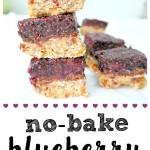 No-Bake Blueberry Chia Jam Bars