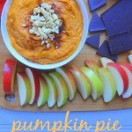 Pumpkin Pie Cheesecake Dip
