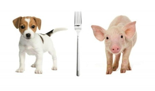 Carnism and the Psychology of Food Choices
