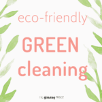 My Favorite Green Cleaning Products