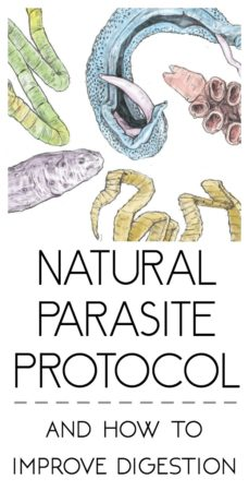 Gut Health and How I'm Getting Rid of Parasites. Natural parasite protocol. How To Get Rid of Parasites Naturally